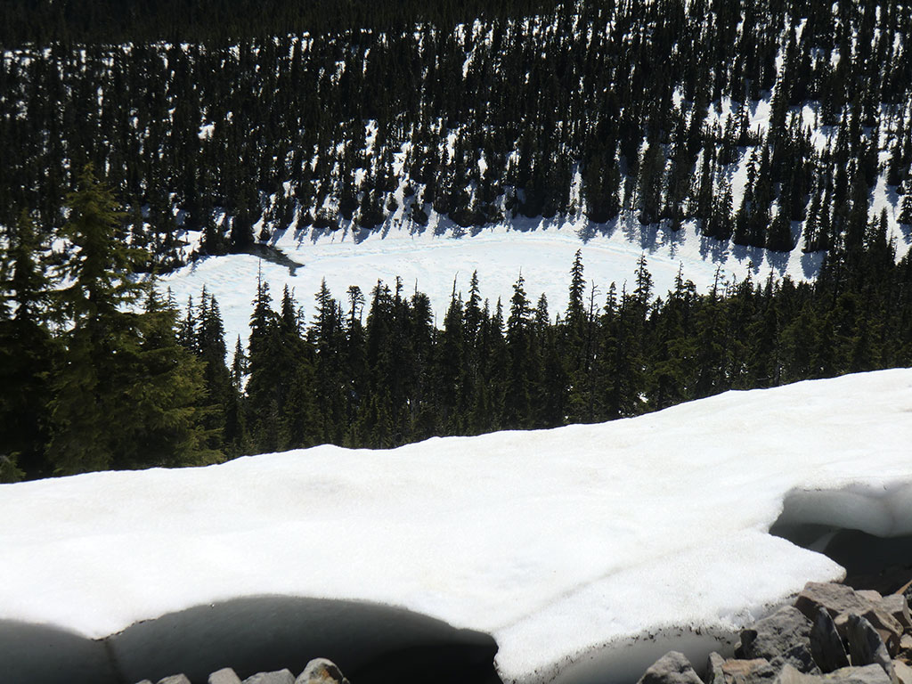 Hiking bear point trail 3342 mt jefferson wilderness for Snow bear ice fishing
