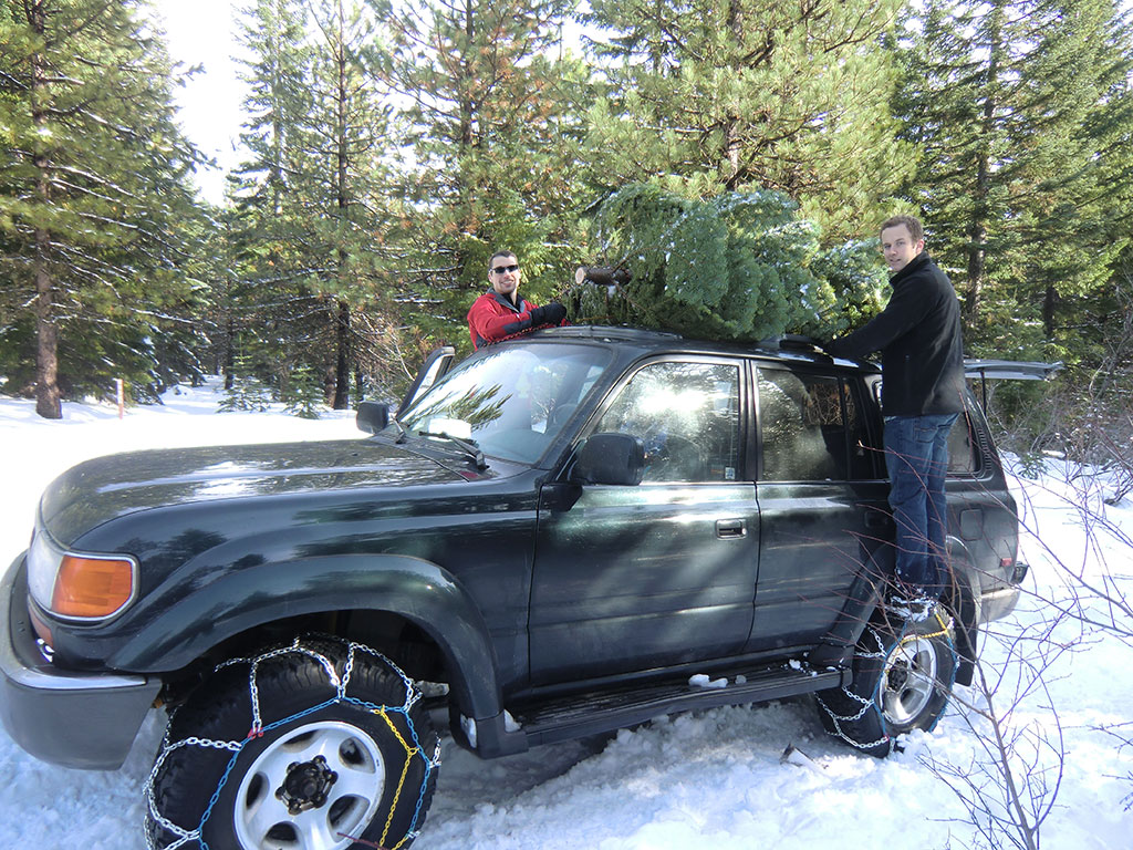 Jason and Kyle Tying Down the Christmas Trees