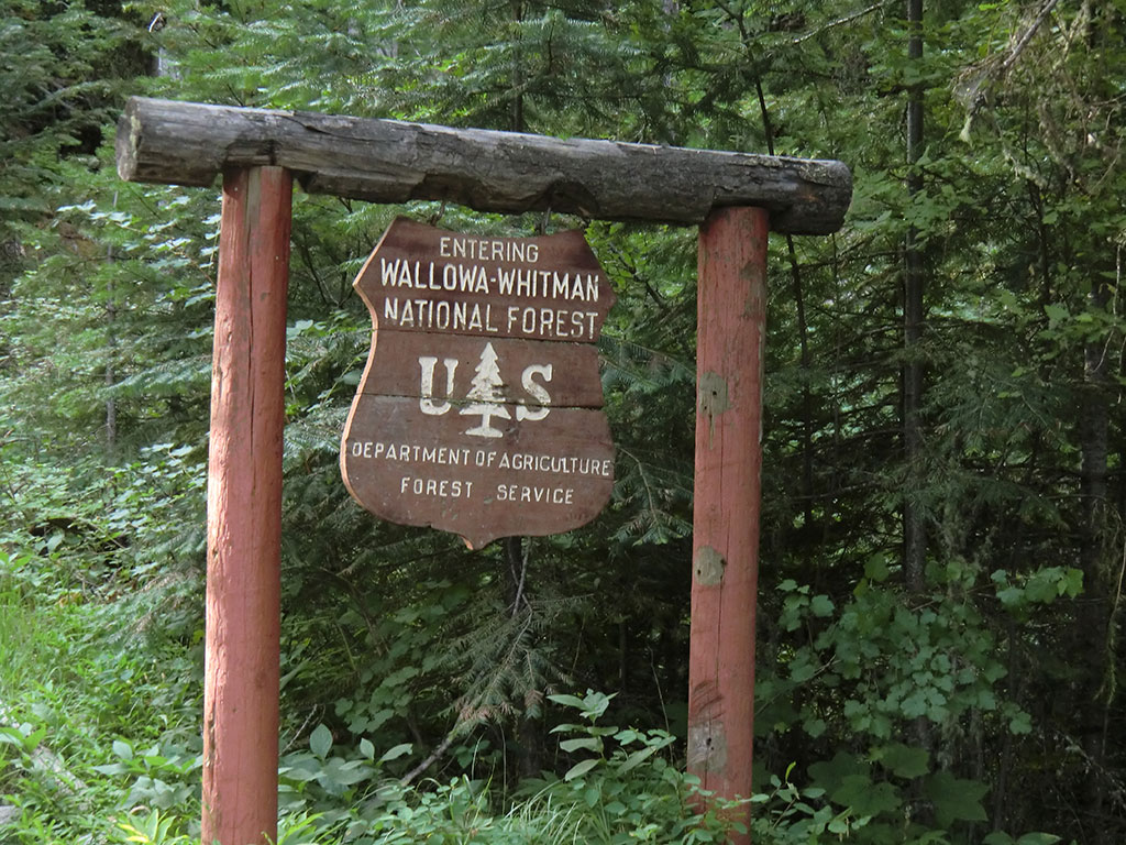 Wallowa-Whitman National Forest Sign
