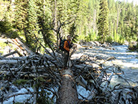 Missing Bridge at West Fork Wallow River Crossing near Ice Lake Trail Junction