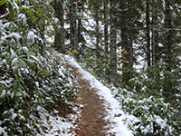 Start of Mirror Lake Trail with a Light Dusting of Snow
