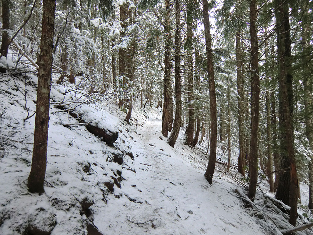 More Snow Higher up the Mirror Lake Trail