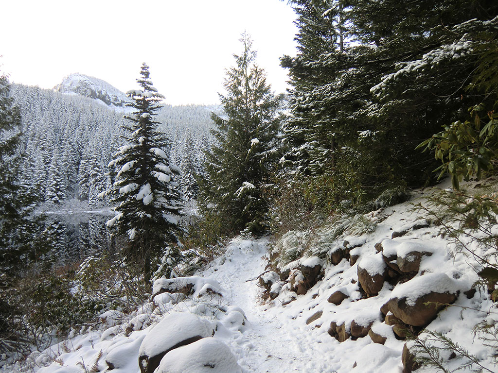 Trail Around Mirror Lake with Tom Dick and Harry Mountain in the Background