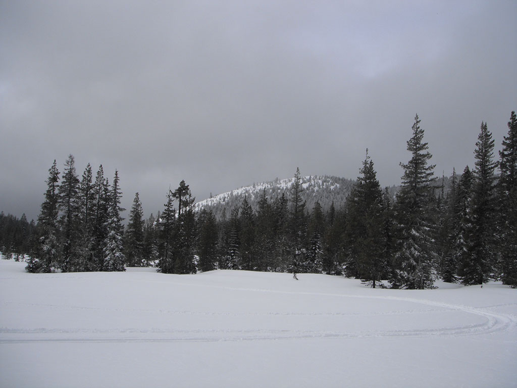 Bonney Meadows with Bonney Butte in the Background