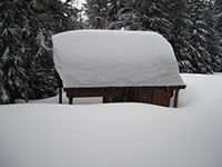 Outhouse Buried by Snow at Bonney Meadows Campground