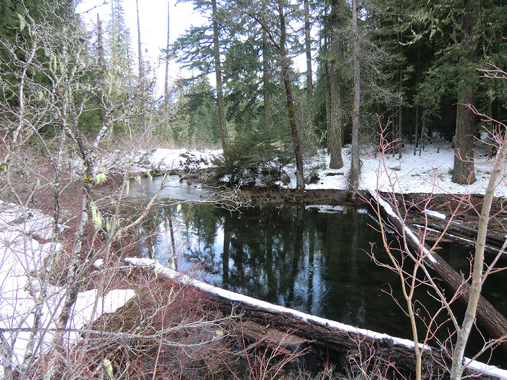 Fish Lake Creek