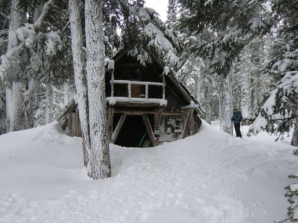 free cabins coso specials rame pictures mt hood lodging walgreens cabin deals coupon rental vacation
