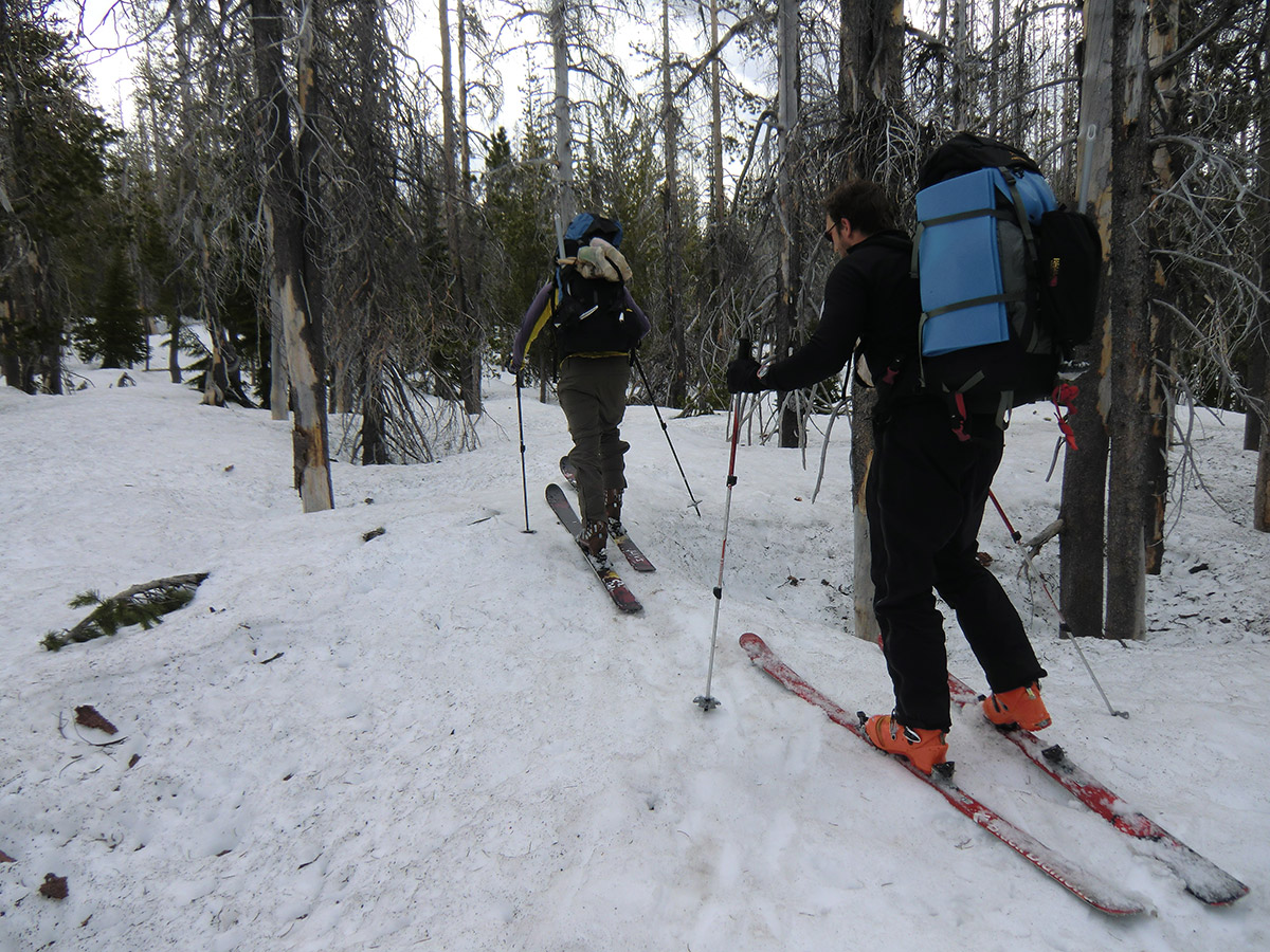 Matt and Loius Skiing Back towards Pole Creek Trailhead