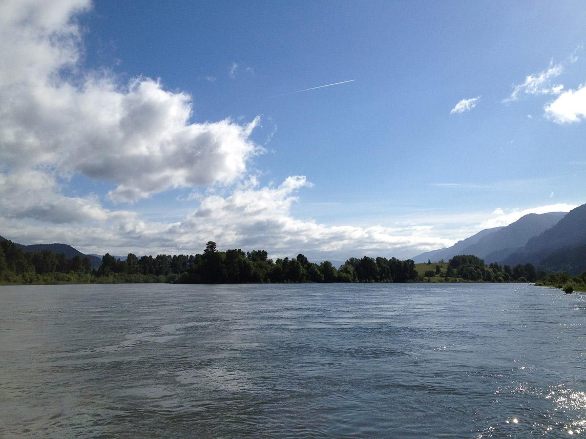 Columbia river shad fishing loomis adventures camping for Fishing columbia river