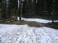 Patches of Snow Blocking Vehicles on NF-500 Road 3 Miles from Trailhead at Cold Springs Campground