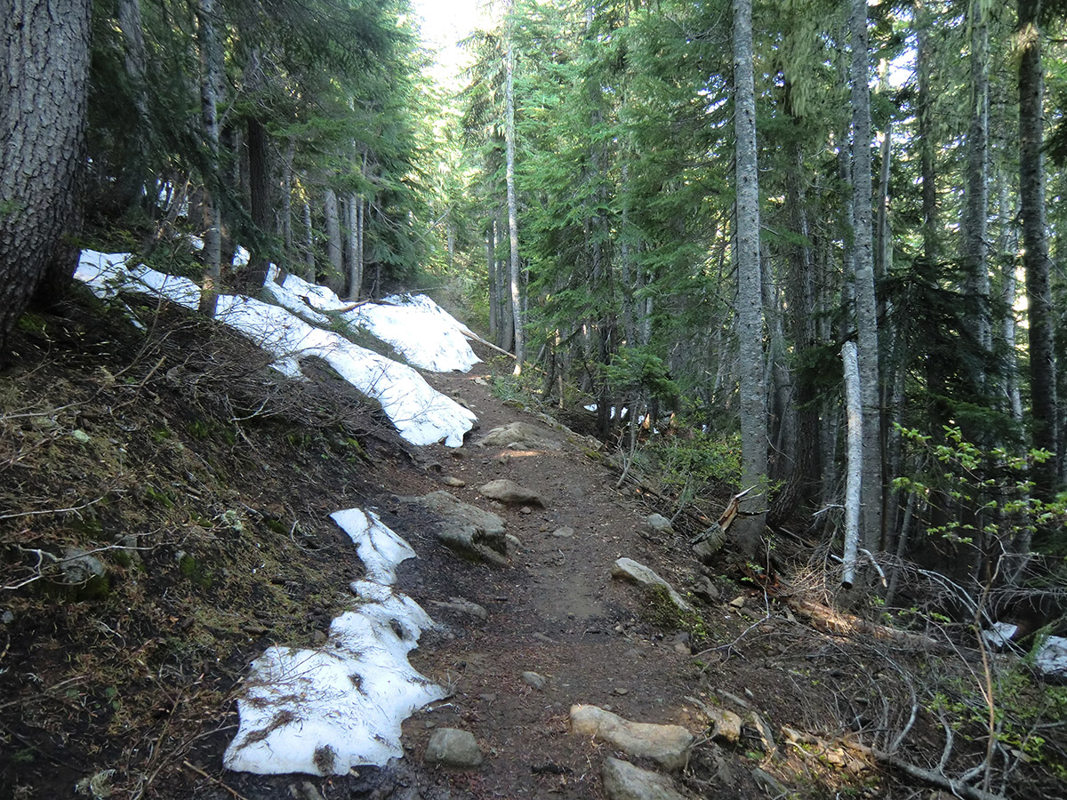 Periodic Patches of Snow at Lower Elevation