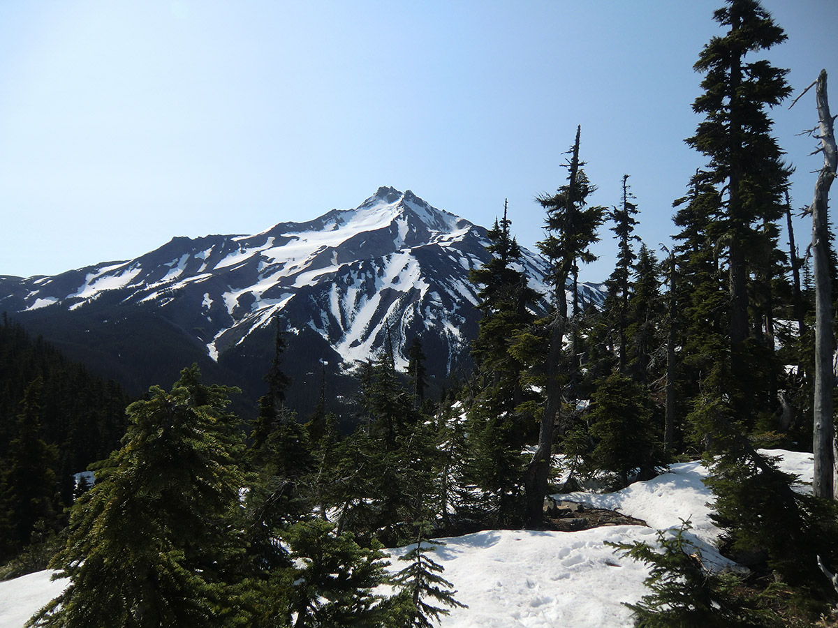 Mt Jefferson from Snow Covered Trail