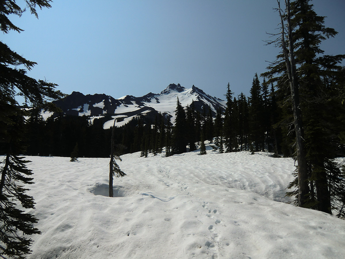 Mt Jefferson from Pacific Crest Trail