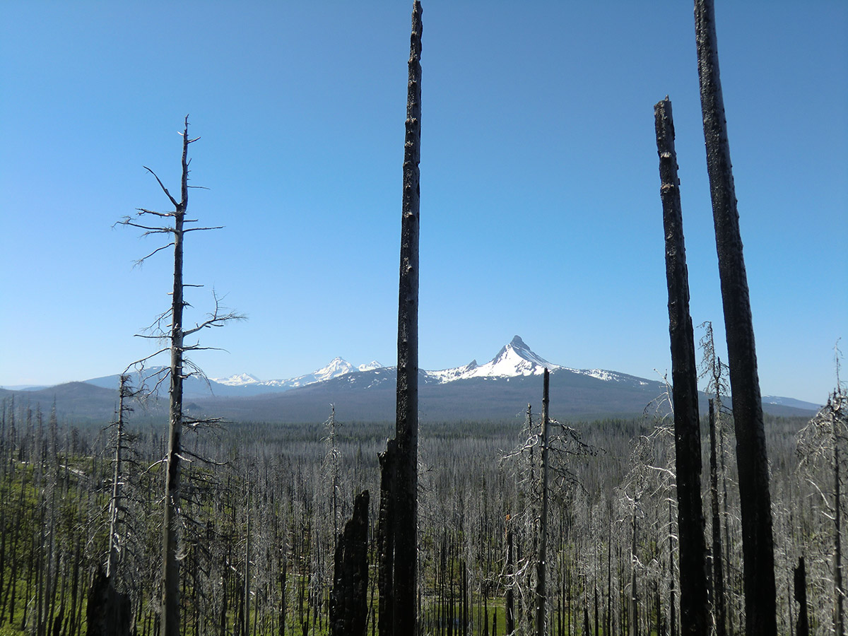 Broken Top, Three Sisters, and Mt Washington (from left to right)