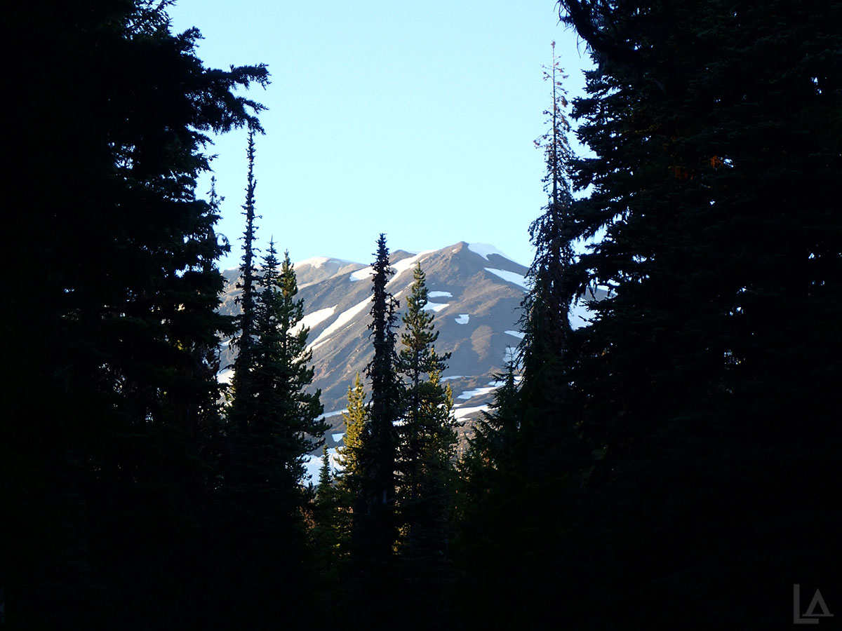 Mt Adams from Cold Springs Campground