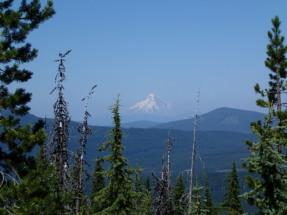 Mt Hood from Potato Butte