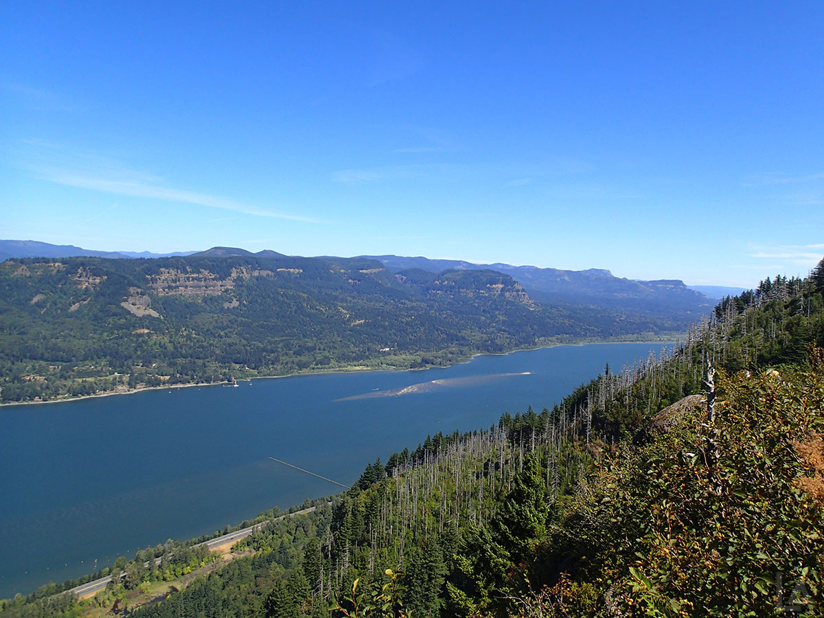 Columbia River Gorge from Angel's Rest