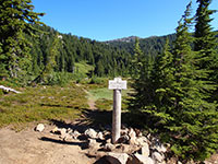 Pacific Crest Trail and South Breitenbush Trail Junction