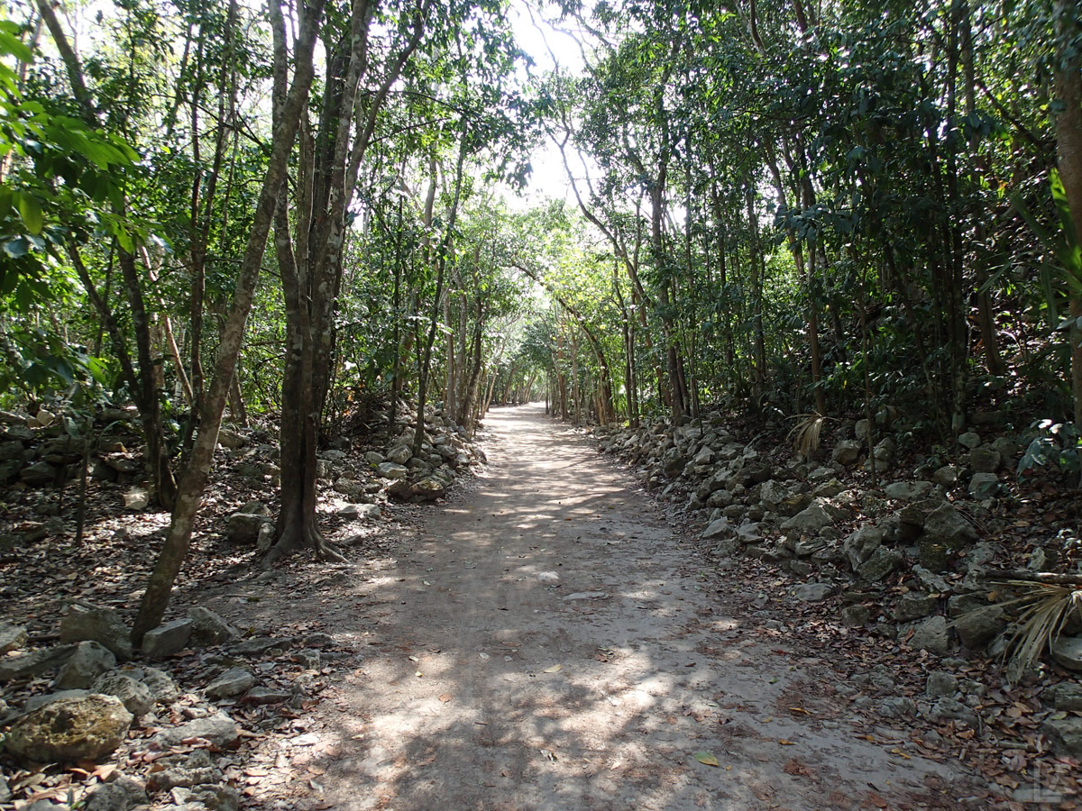 Sacbe (the white road) at Cobá Ruins