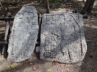Stelae with Drawings and Glyphs at Cobá Ruins