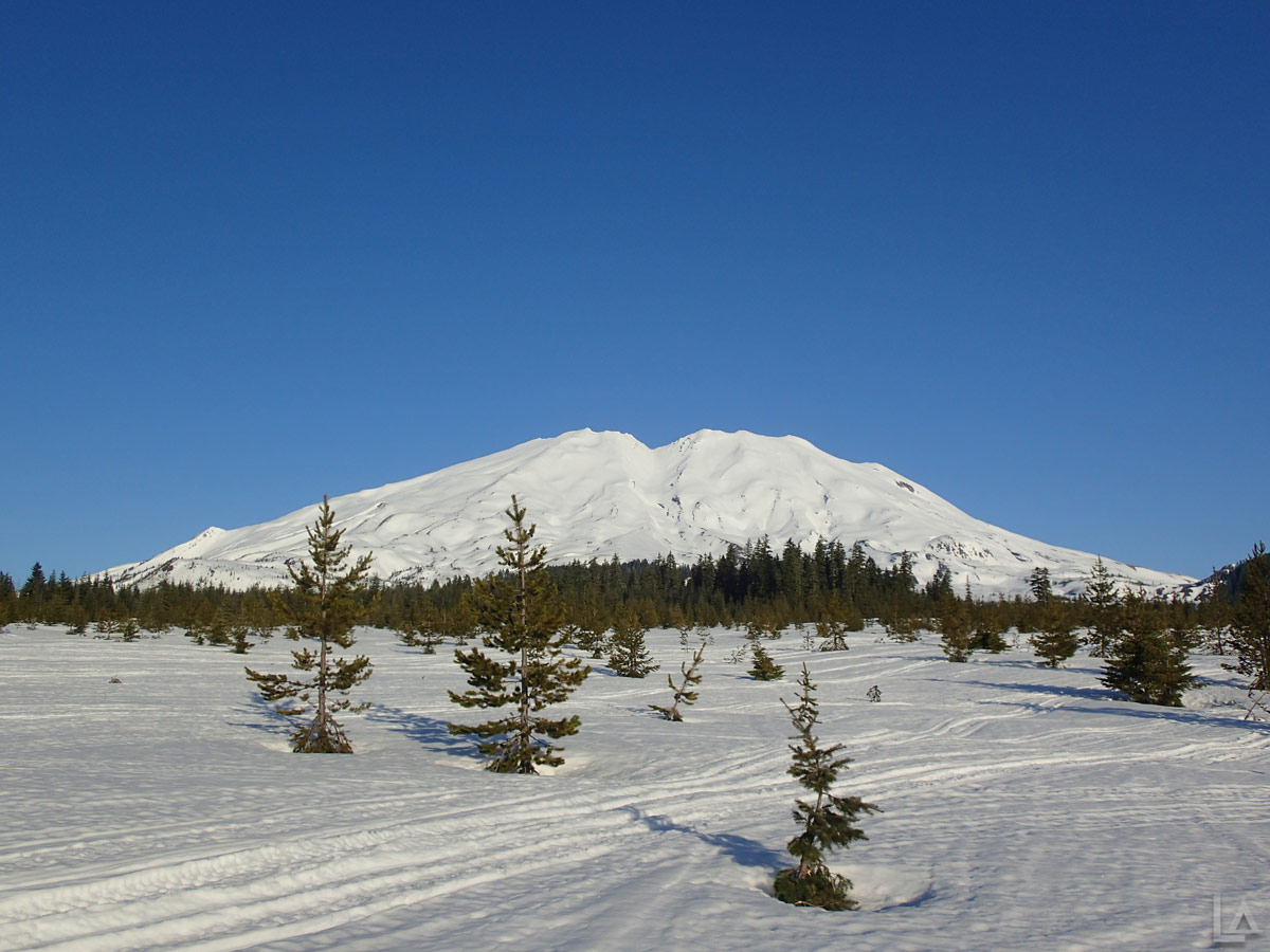 Snowmobiling At Mt Saint Helens And The Plains Of Abraham