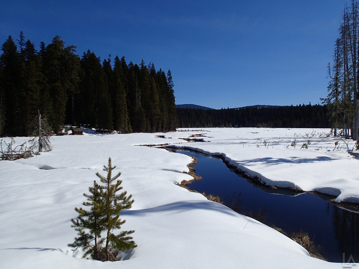 Clackamas Lake in the Winter