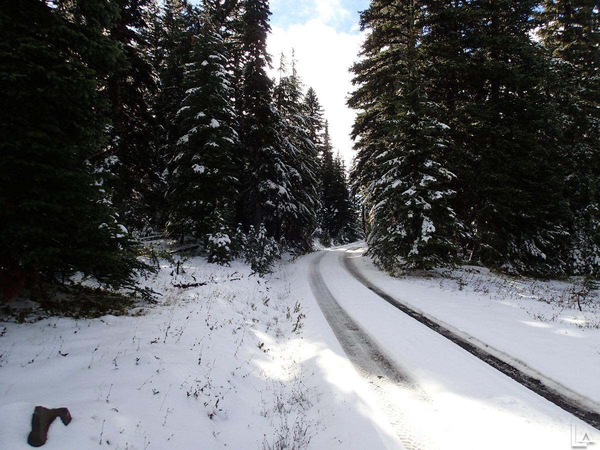 Pre Season Snowmobiling Near High Prairie Lookout Mountain