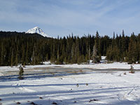Bonney Meadows with Mt Hood in the background