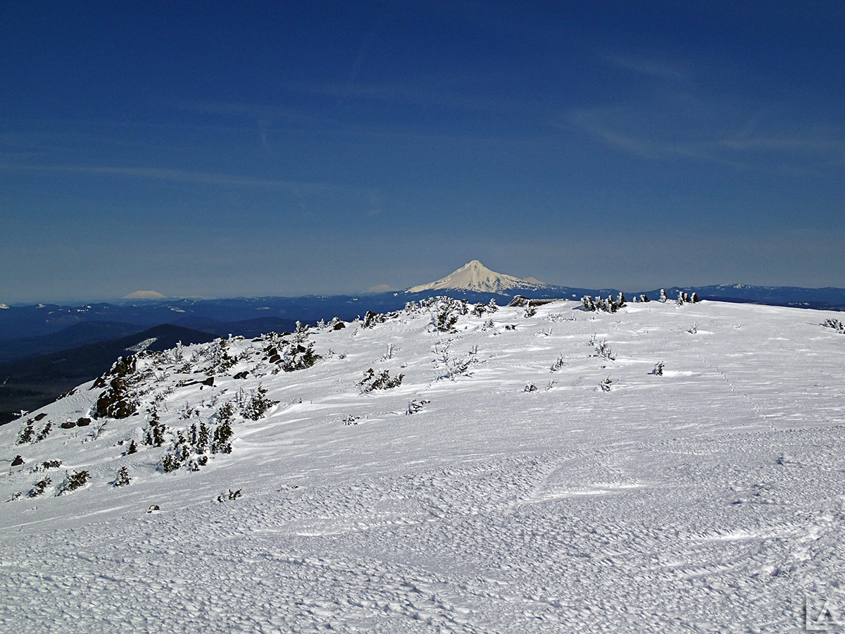 Mt Hood from across the summit of Olallie Butte