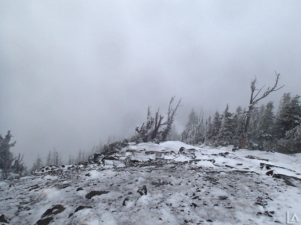 No view today from Lookout Mountain summit
