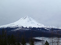 Snow covered Mt Hood