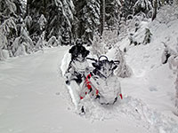 Powder everywhere! A snowmobiler's dream.