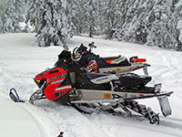 Snowmobiling at Bonney Meadows with Gray Jays