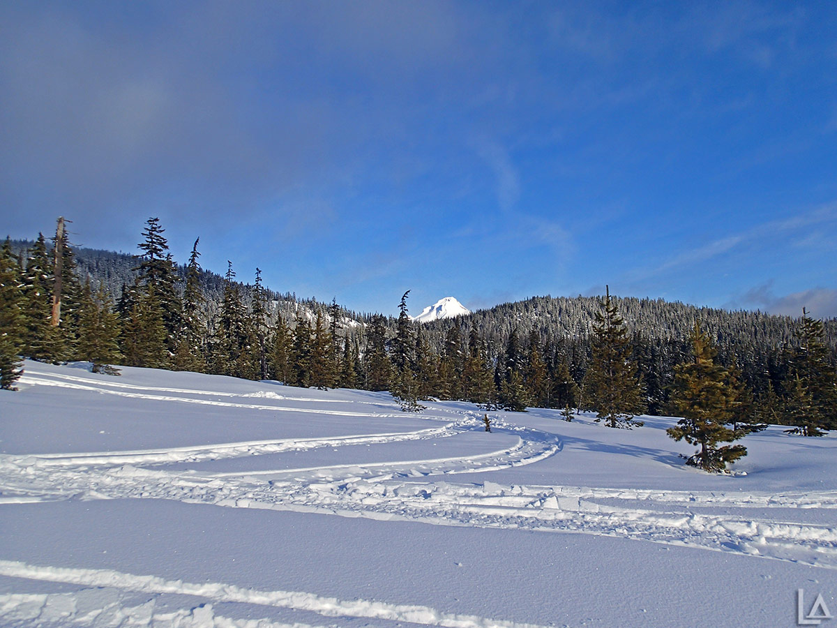 Mt Hood in the snow