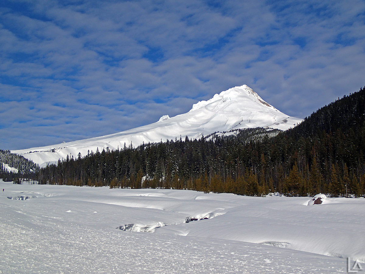 Mt Hood from White River SnoPark