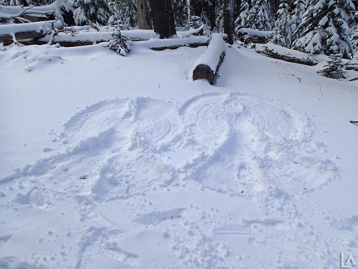 We couldn't get Julian to make a snow angel to complete our family