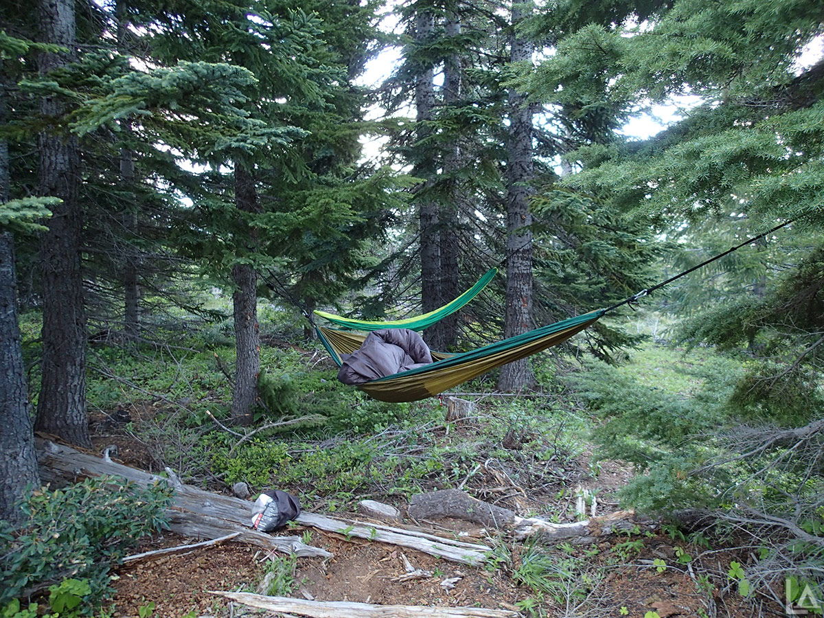Hammocks setup at camp