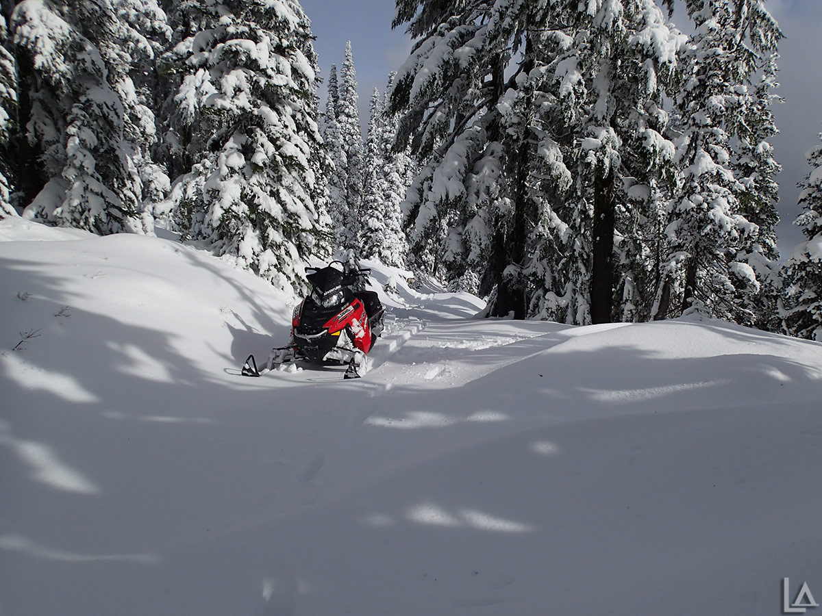 Lots of fresh powder for snowmobiling