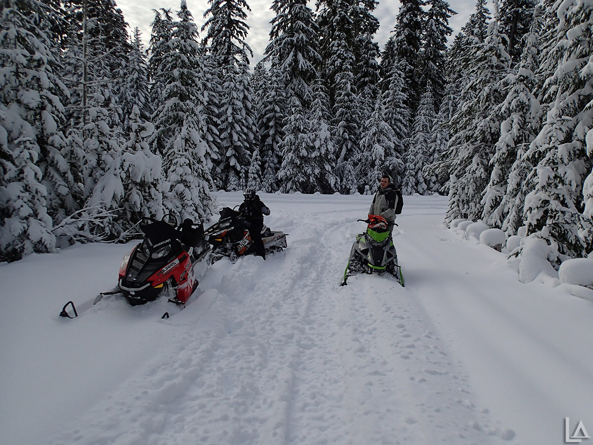 Snowmobiling near White River East SnoPark - Mt Hood, Oregon