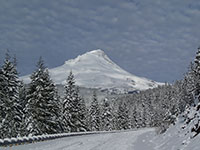 Snow covered Mt Hood in November