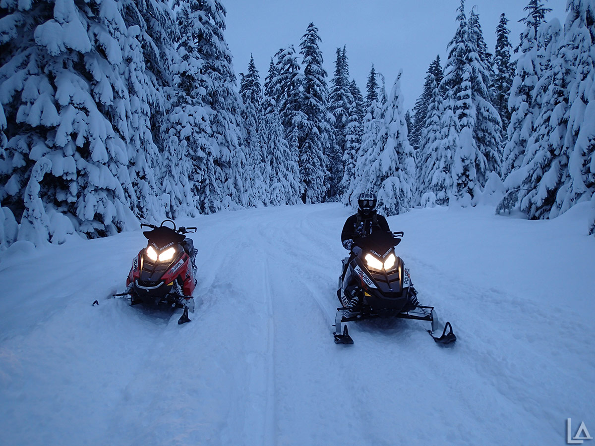 Snowmobiling from Frog Lake at first light
