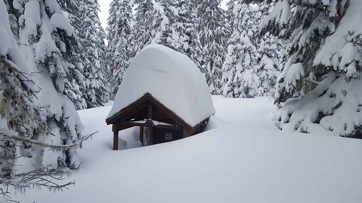 Bathroom at Bonney Meadows buried in snow