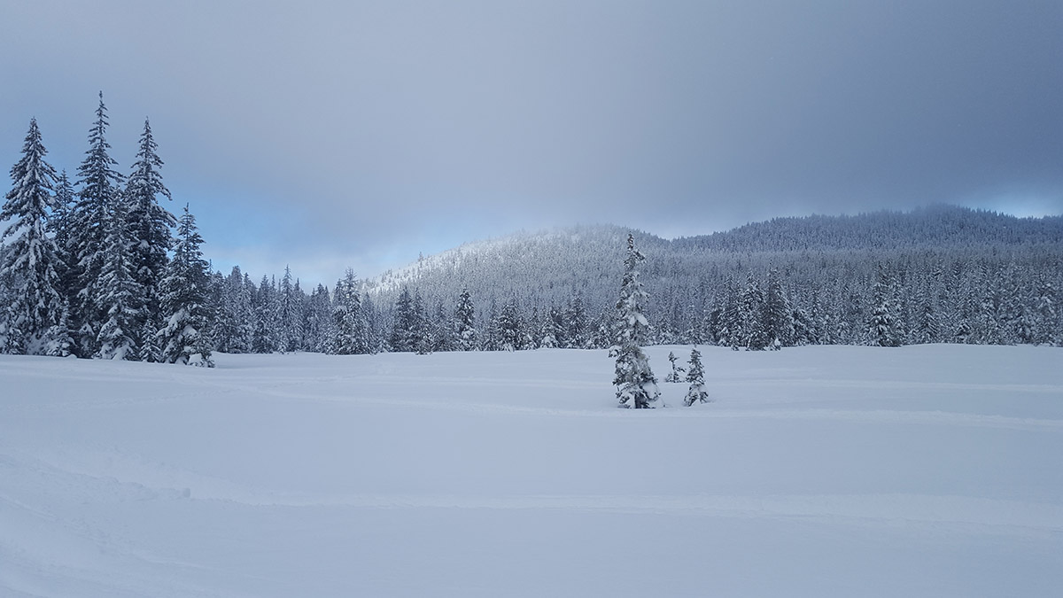 Bonney Meadows, Oregon in winter
