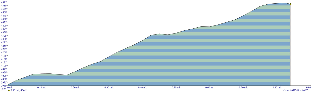 Bald Mountain Trail Elevation Profile