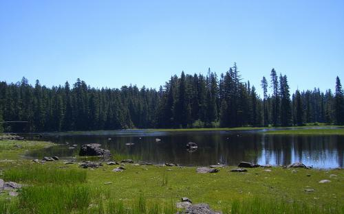 Frying Pan Lake - North Side - Mount Hood National Forest, Oregon