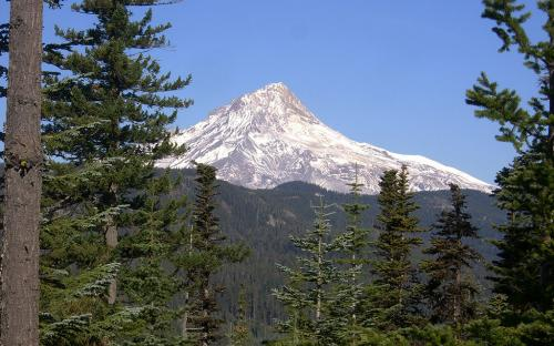 Mount Hood from Badger Lake Road, Oregon